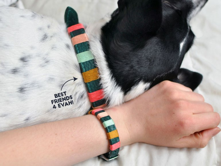 "You may have seen some really amazing ""friendship bracelets"" for you and your dog from companies like Friendship Collar or Bearytail Leather Company, but are itching for something a little more personal. With just some simple materials and a few minutes, you can make your very own DIY friendship bracelet collars!"