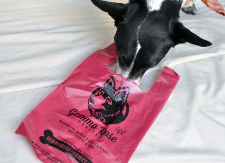 Do you ever feel guilty while scooping your dog's poop with a plastic bag, wishing there was a way you could be a little nicer to the environment while helping homeless pups? Gemma Rose Project's poop bags are the solution!