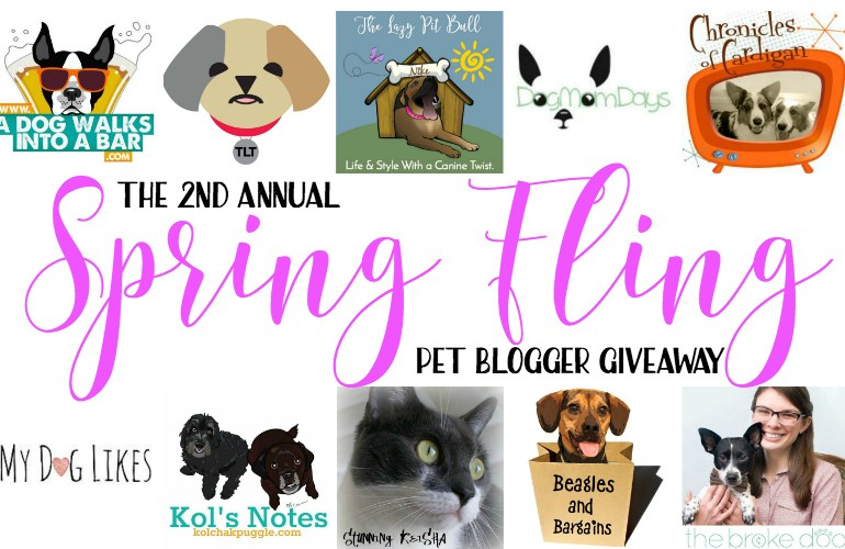 Enter to win a $250 Amazon Gift Card and more in the Pet Blogger Spring Fling Giveaway!