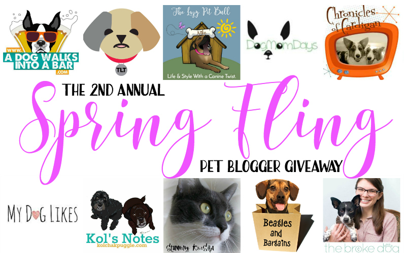 It's a Spring Fling! Win a $250 Amazon Gift Card and More in Our Pet Blogger Giveaway