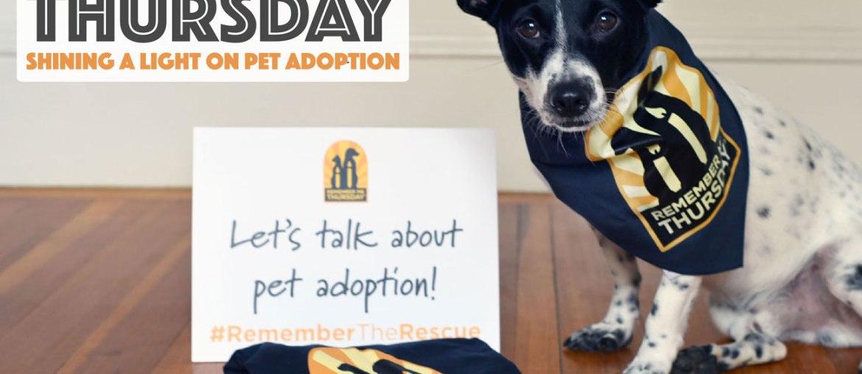 Remember Me Thursday: A Light on Animal Rescue