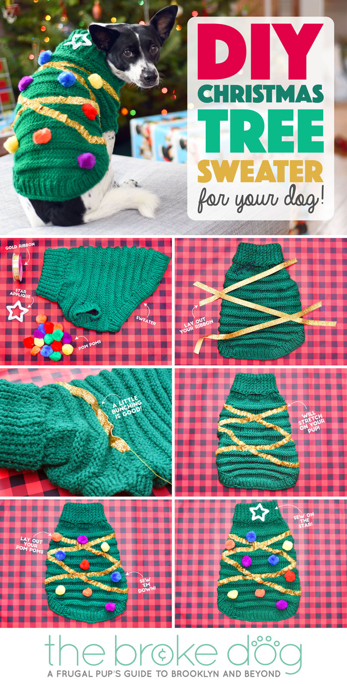 Diy christmas tree sweater for your dog the broke dog 6 congrats you have successfully made a diy christmas tree sweater solutioingenieria Image collections