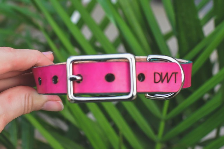 Dogwood Trl, a new handmade collar company, offers stunning custom leather dog collars that will perfectly fit your dog's personality.