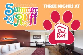 Think that finding a dog-friendly hotel is both difficult and expensive? Think again! Red Roof Inn offers affordable accommodation with no pet fee!