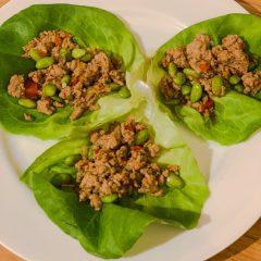 Instant Pot Ground Turkey Lettuce Wraps