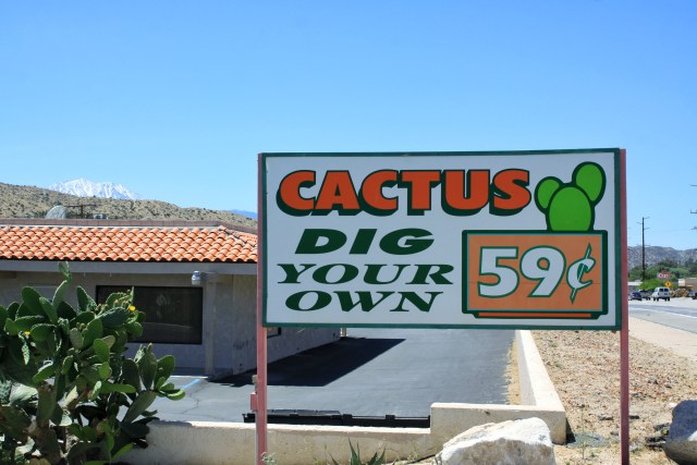 Dig your own cactus