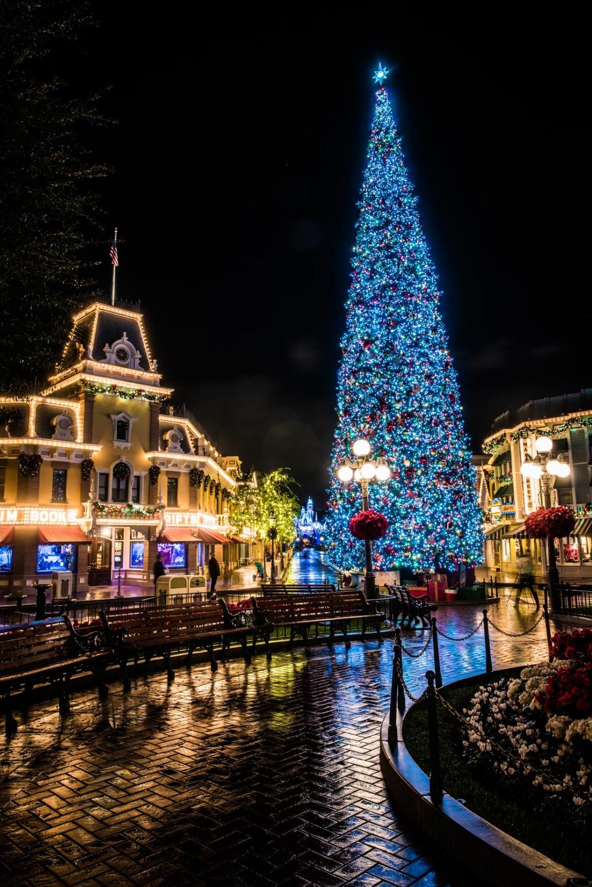 Christmas at Disneyland - Christmas Tree