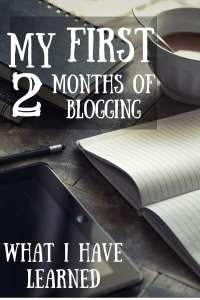 My First Two Months Of Blogging Pinterest