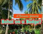 Bohol and Panglao Island | Chocolate Hills Bohol, Beautiful Beaches, and More!