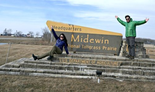 Best Places to See Illinois Wildlife
