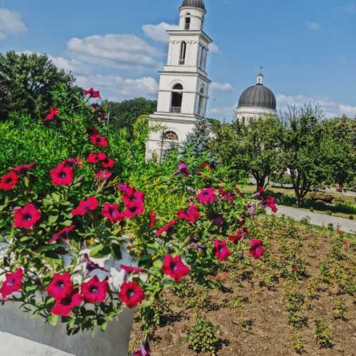 Chisinau Moldova The Metropolitan Cathedral Nativity of the Lord Flowers