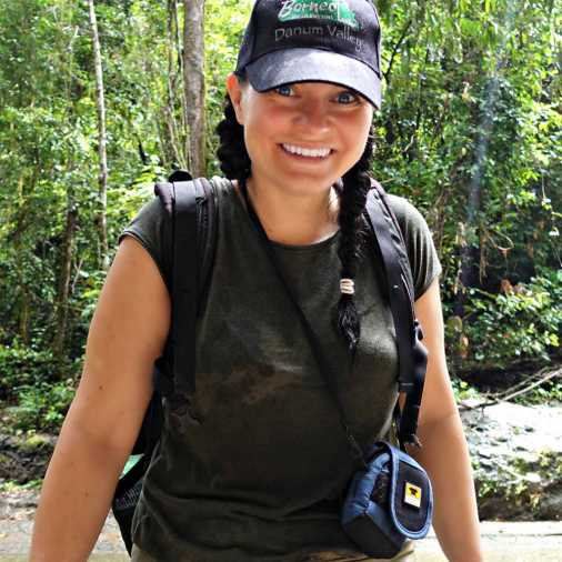 The Budget Savvy Travelers Borneo Rainforest Lodge