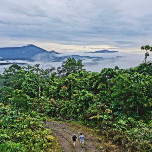 exploring borneo island walking from morning sunrise tower