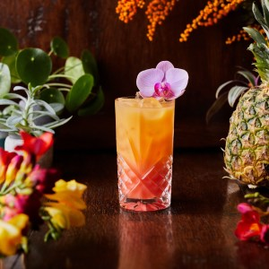 Hurricane Cocktail Kits