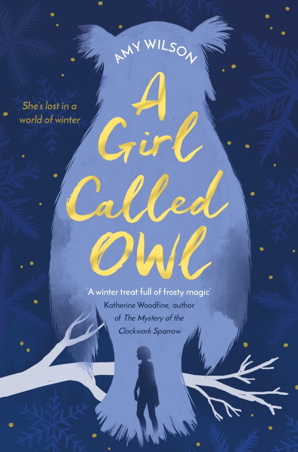 A Girl Called Owl by Amy Wilson