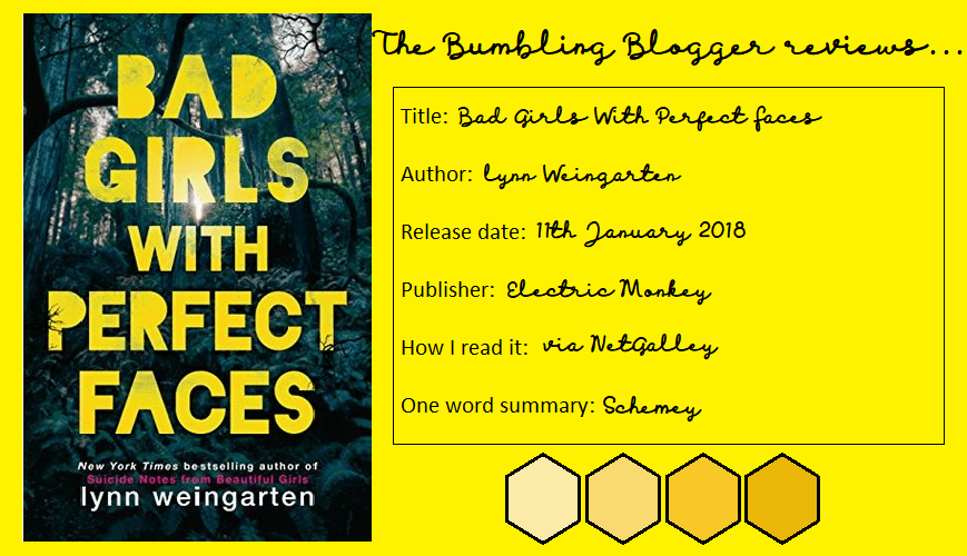 Review: Bad Girls With Perfect Faces by Lynn Weingarten