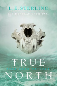 True North by L.E. Sterling cover