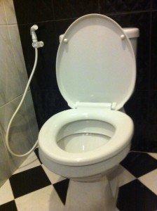bum gun clean toilet