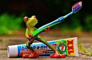 Toothbrush-hygiene-close-toilet-lid-3