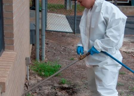 pest spraying