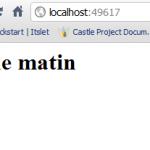 Castle Windsor ASP.NET MVC 3 Baby Example part 2 (2/2)