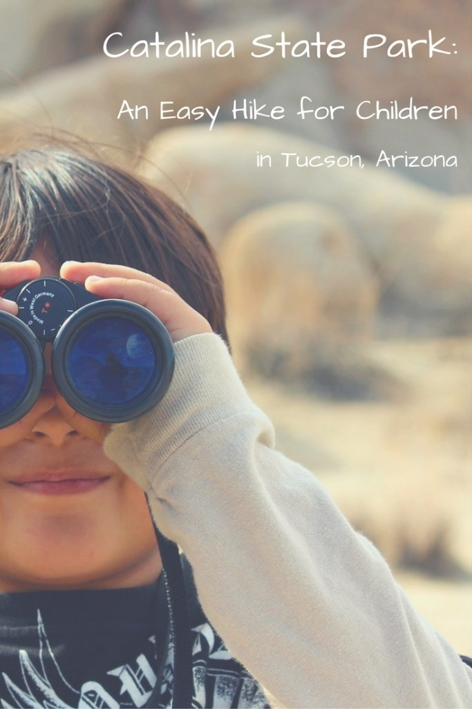 Catalina State Park: An Easy Hike for Children in Tucson, Arizona