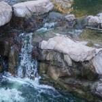 A Family Friendly Activity in Tucson:  Nature Walk at Loews Ventana Canyon Resort