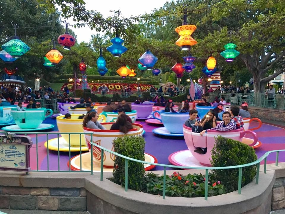 One of the best rides for toddlers at Disneyland? The teacups. Photo by Caroline Knowles.