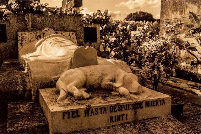 photograph from the Cementerio de Colon series by Figueredo Véliz