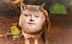 Ben Bradley Wolf OTP Main