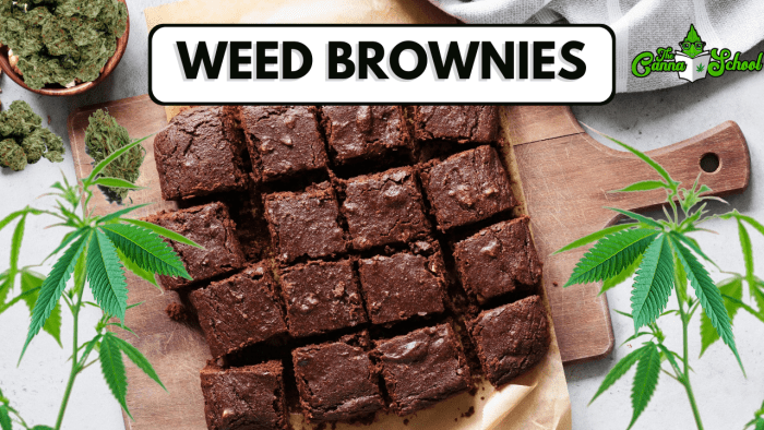 cannabis infused brownie on a wooden cutting board blog header graphic