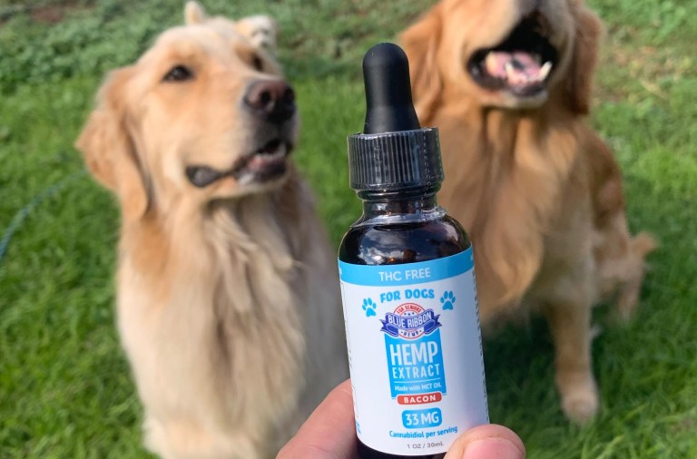 Is Blue Ribbon Hemp Legit A Real Tested CBD Brand Spotlight