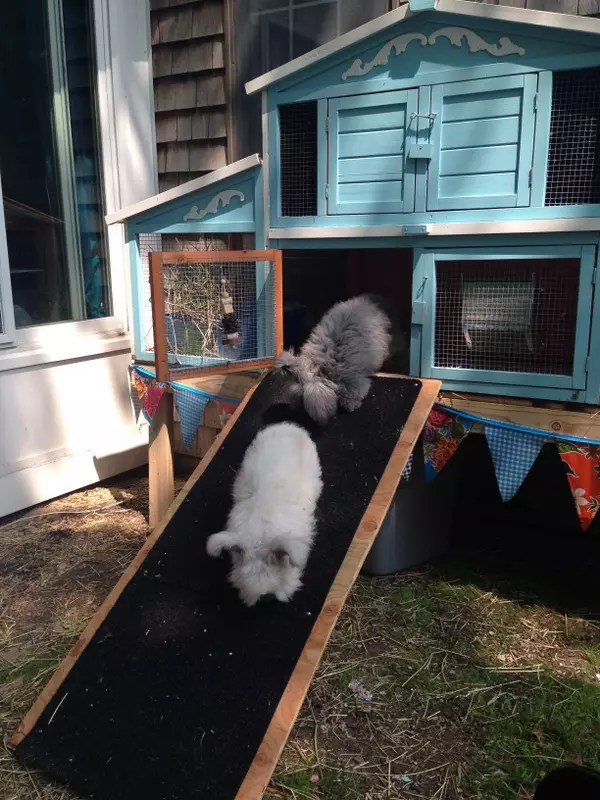 Building A Raised Flagstone Patio: Building A Raised Base For A Rabbit Hutch