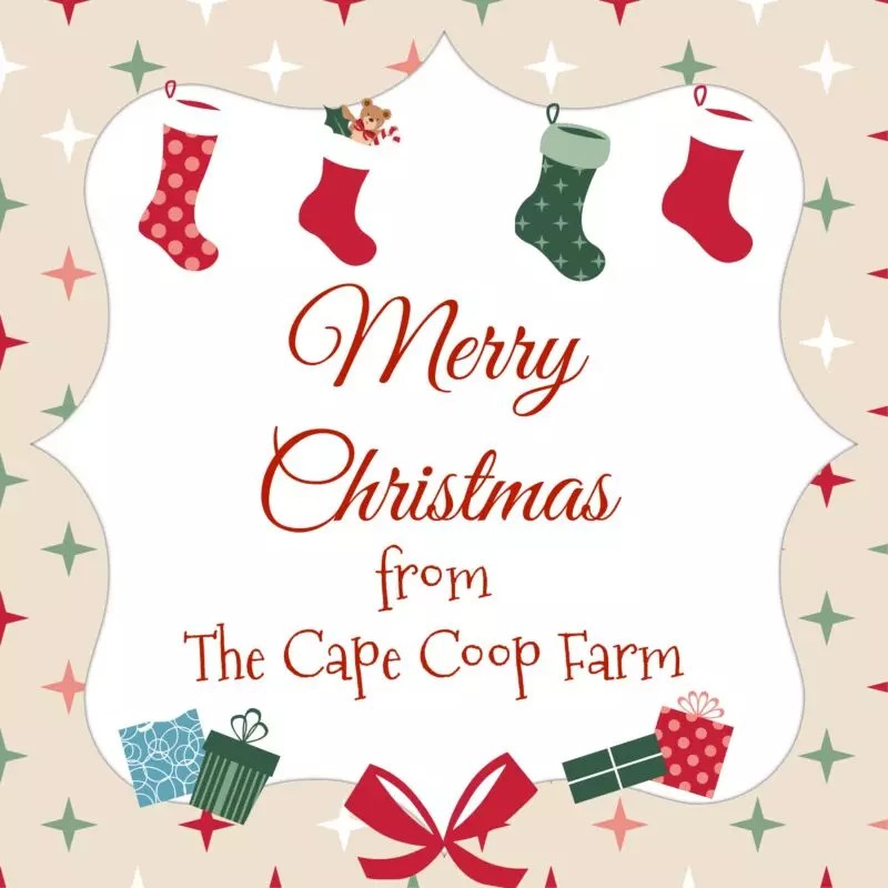 gifts for homesteaders u0026 backyard farmers the cape coop