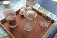 Egg experiments for learning science are fun and easy. Cells (life science), solutions (chemistry), air pressure, and forces (physics) can all be taught with eggs!