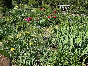 denver-botanic-garden-8
