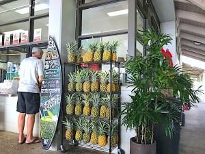 barefoot-beach-cafe - 4