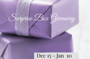 Surprise Box Giveaway 12.15.17 – 1.10.18