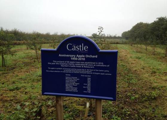 The Castle Apple Orchard