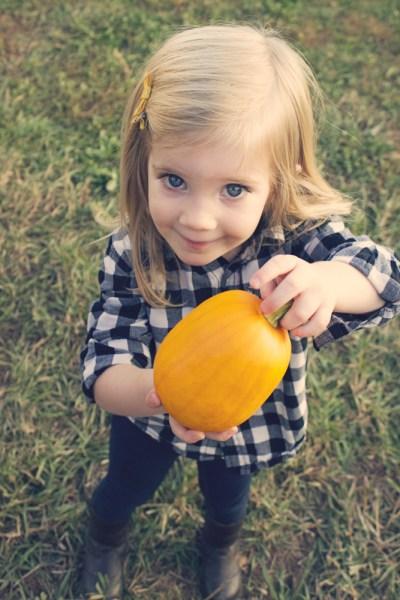 Pumpkin Patch 2 - 09