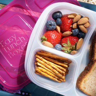 Make lunches EASY with Easy Lunchboxes!