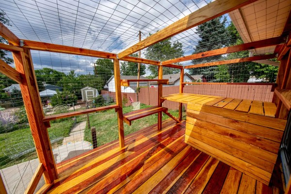 the boulder catio interior shot with deck by cat topia