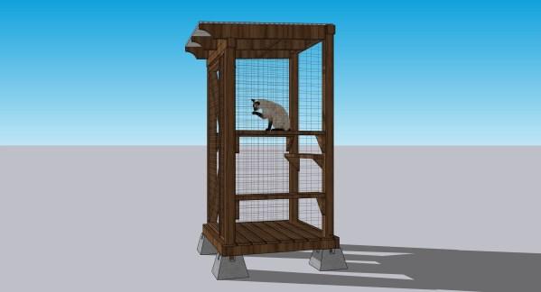 cat in cat enclosure
