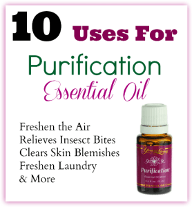 Purification Essential Oil - 10 Uses ~ TheCentsAbleShoppin.com