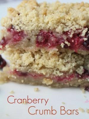 Easy Cranberry Crumb Bars