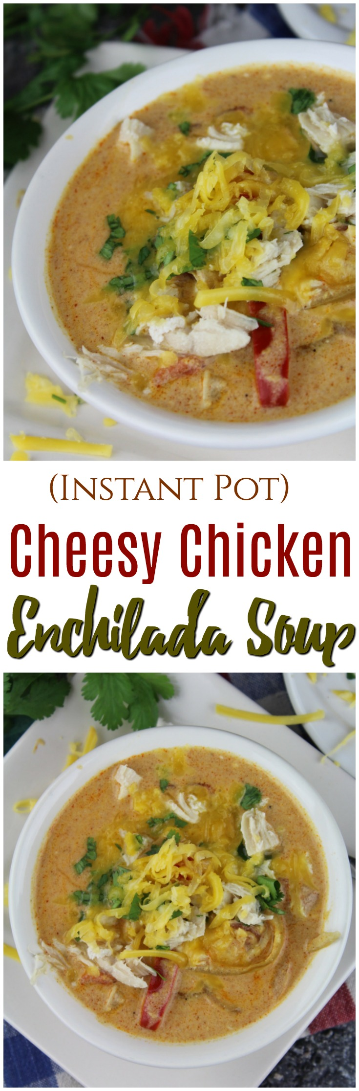 This Instant Pot Cheesy Chicken Enchilada Soup is a quick and easy recipe for a deliciously cheesy and hearty soup that everyone will love.