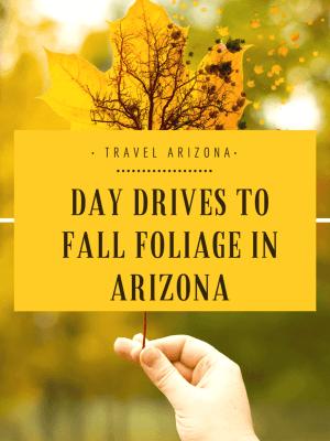 Day Drives to Fall Foliage in Arizona