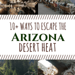 Over 10 Ways to Escape the Arizona Heat