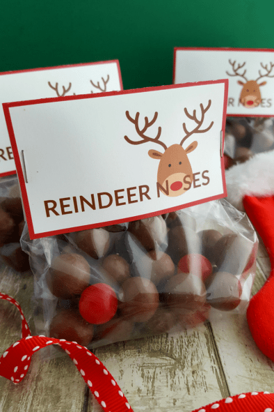 Reindeer Noses Treat Bags - The Cents'Able Shoppin