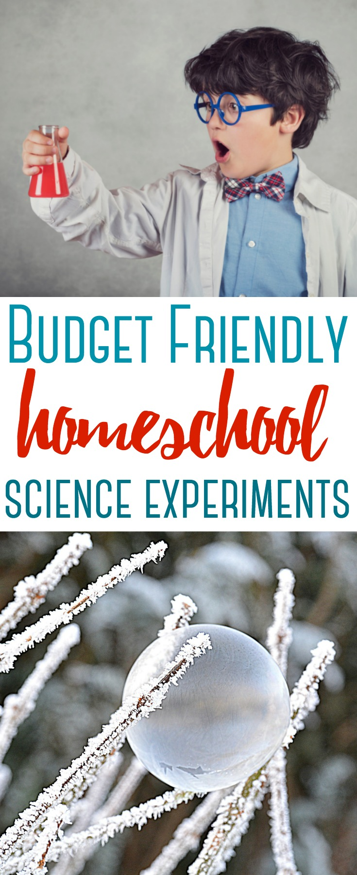 These science activities and projects will get your kids excited about learning science. Here are 7 Budget Friendly Homeschool Science Experiments!